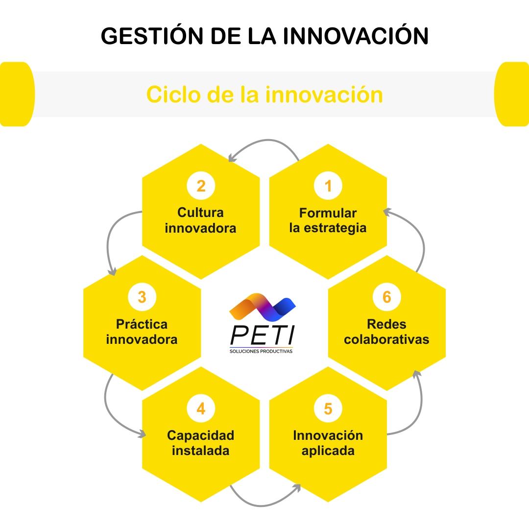 PETI Estrategia Organizacional Gestion Innovacion