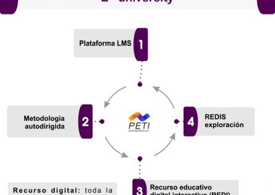 E-university