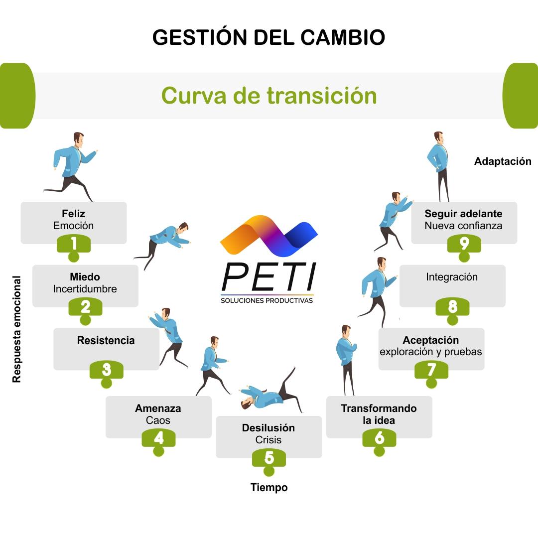 PETI Estrategia Organizacional Gestion Cambio