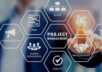 Gerencia de Proyectos Tecnológicos ERP CRM. MRP BI/BA